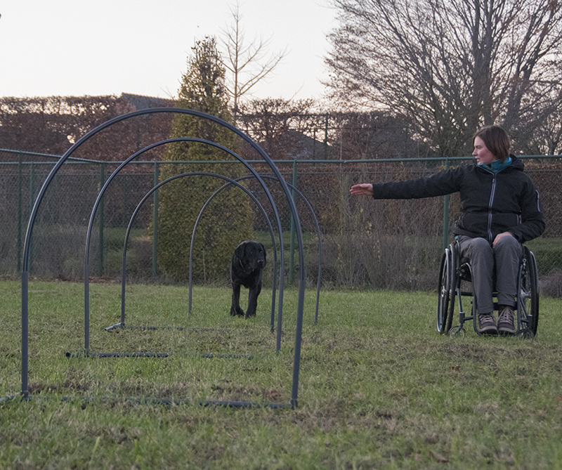 Hoopers by fitdogs.be Petra Sallaerts